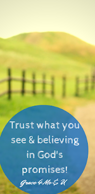 Sometimes as adults we hear God's promises but we doubt his goodness. Even when God gives us what He promised, we still doubt. Check out this post for a reminder to trust in what you can see.   Grace 4 Me & U