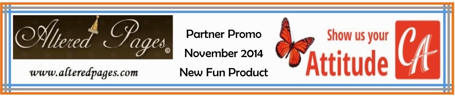 Our November Partner