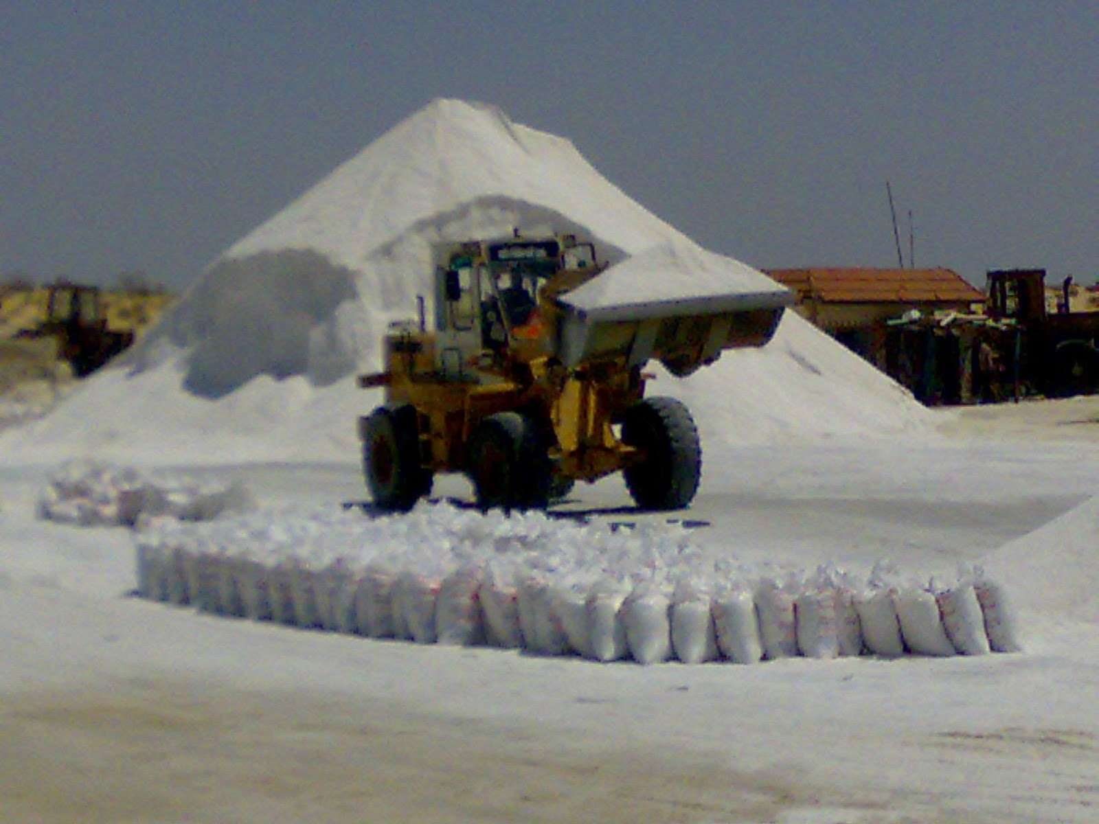road_salt_suppliers