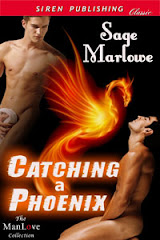 Catching a Phoenix (#1)