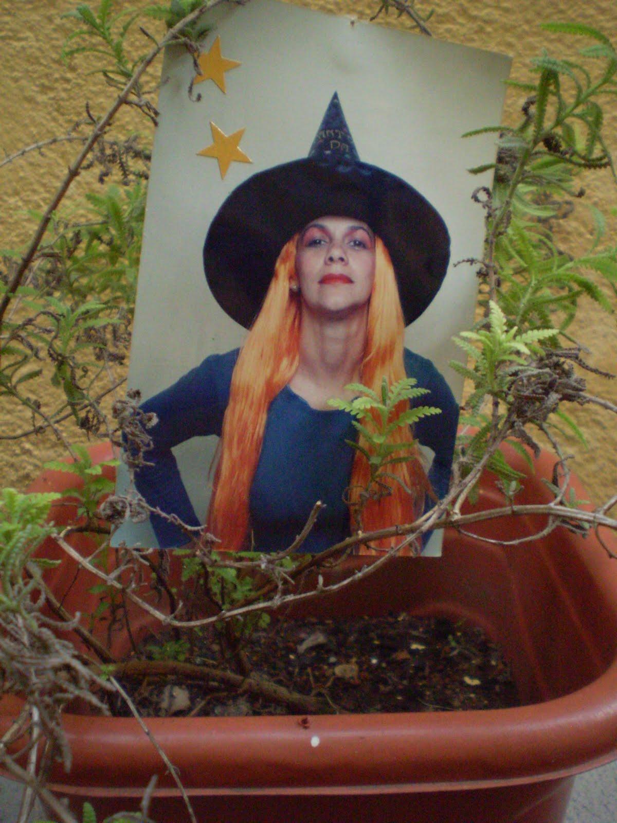 Canto da Bruxa