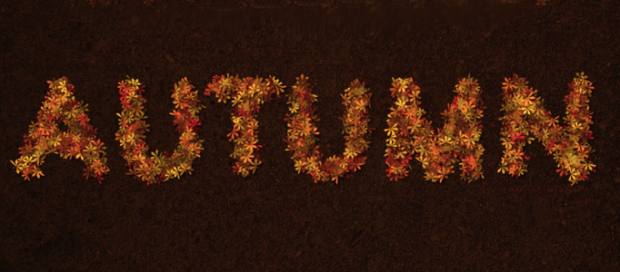 A Text Effect using Natural Leaves