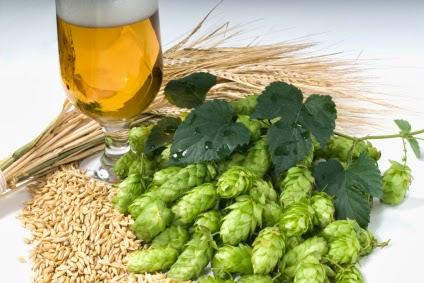Resultado de imagem para hidratação com cerveja