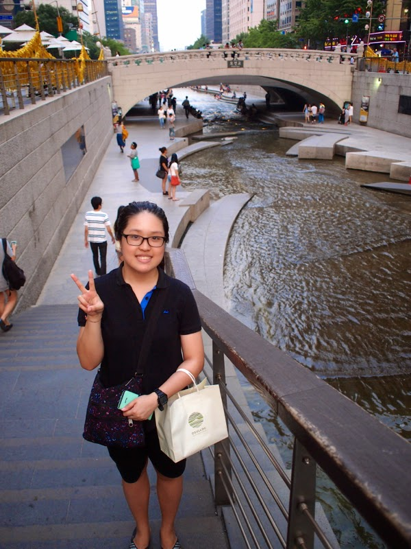 Ewha University Summer Studies Travel Seoul Cheonggyecheon City Tour lunarrive blog singapore