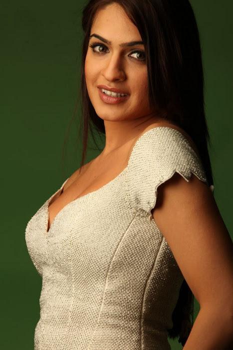 aditi agarwal shoot actress pics