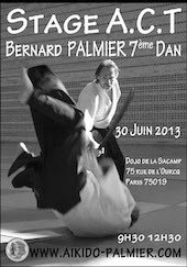 Seminar with Bernard Palmier Sensei in Paris