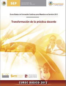 CURSO BÁSICO DE FORMACION CONTINUA PARA MAESTROS EN SERVICIO 2012