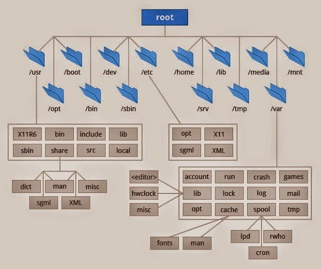 Linux For Freshers File System Hierarchy