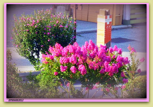 Hommage aux jardiniers de Saint Jean de Maurienne