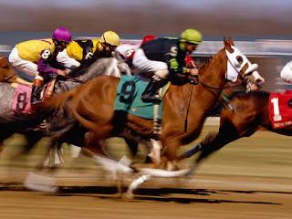 12.10.2013 cumartesi bursa yarışları