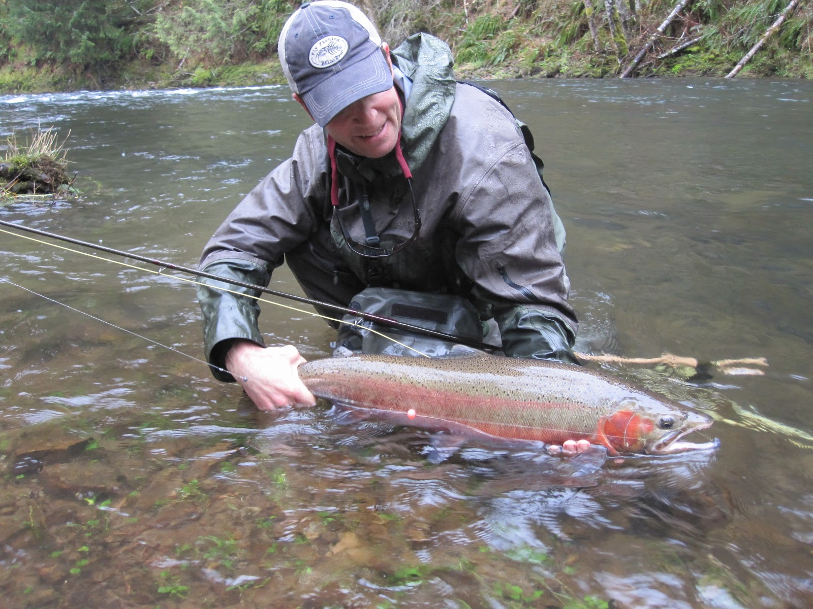 Brian marz 39 s fly fishing oregon blog quick 3 2 2012 for Trout fishing oregon