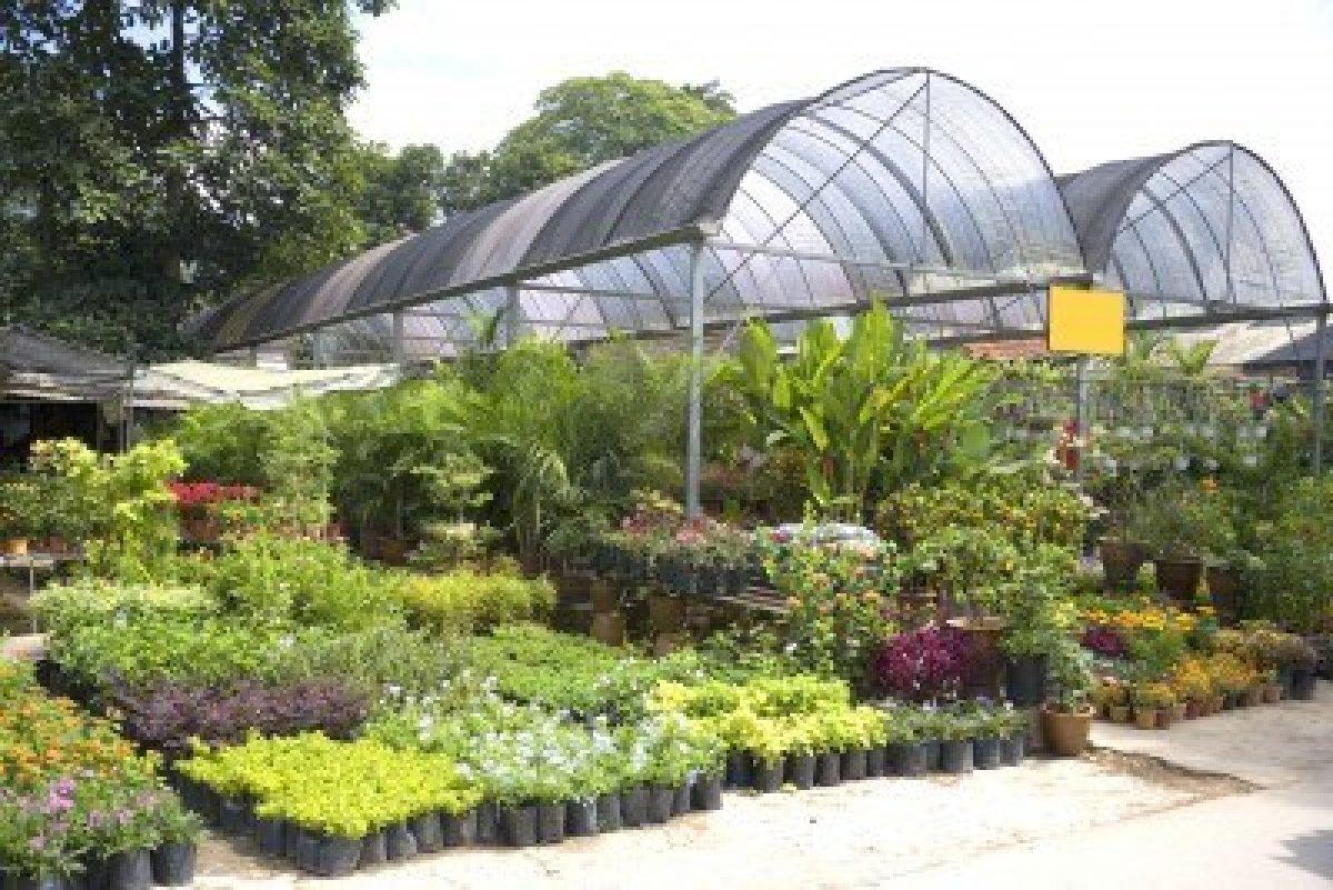 Vivero de plantas, arboles, ornato, jardineria