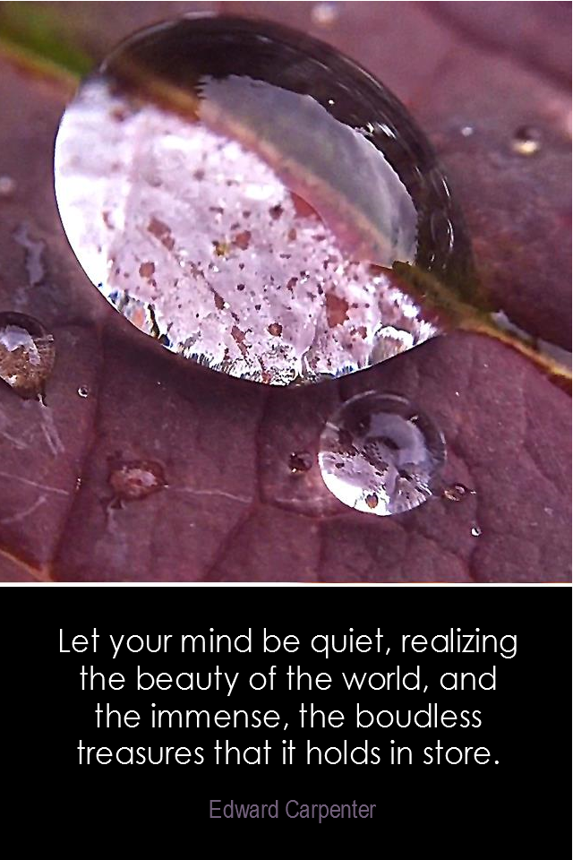 visual quote - image quotation for AWARENES - Let your mind be quiet, realizing the beauty of the world, and the immense, the boundless treasures that it holds in store. - Edward Carpenter
