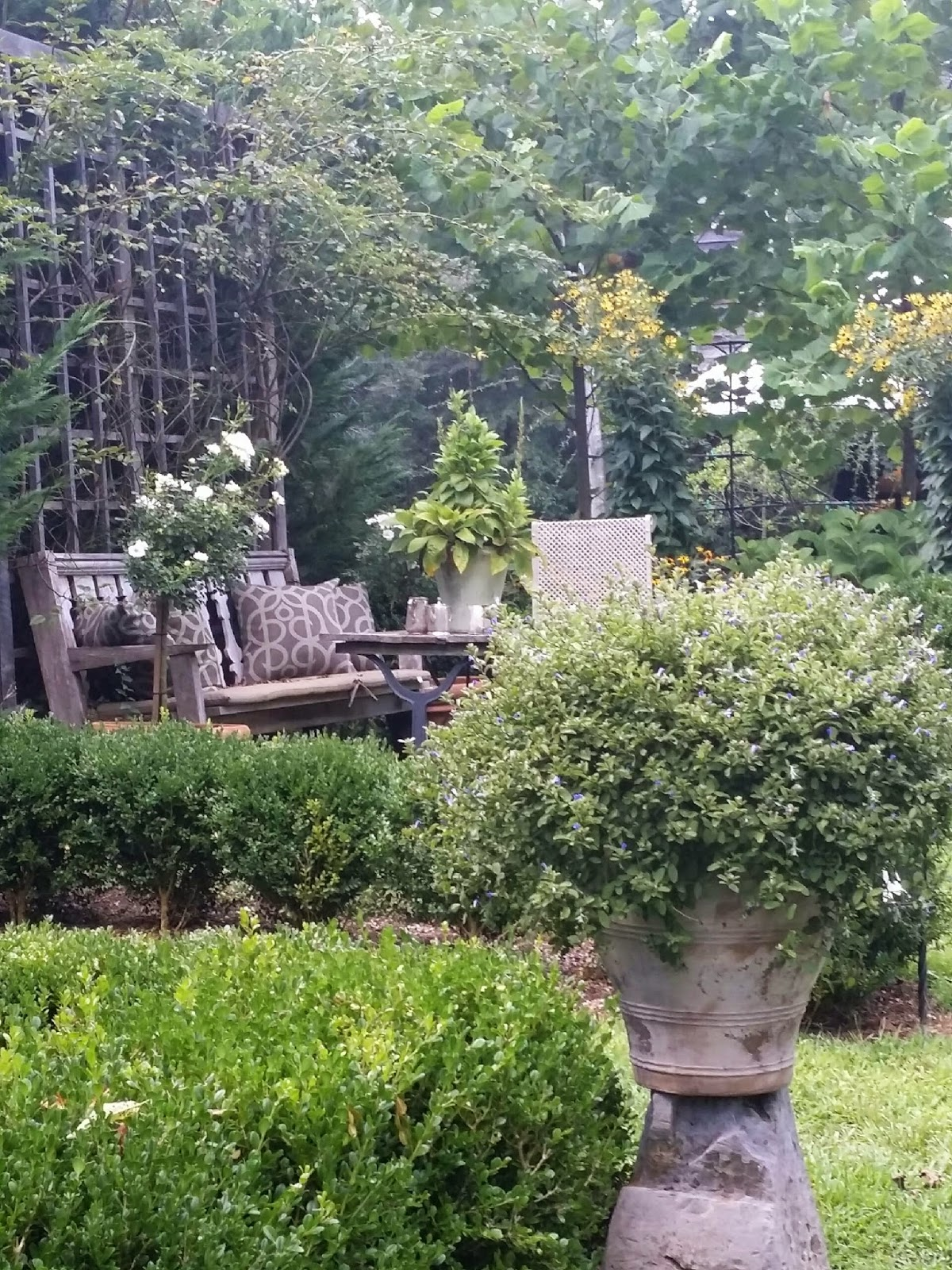 Tara dillard for Design my garden
