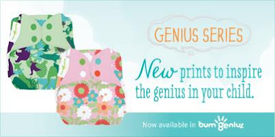 bumgenius Maathai and Irwin Prints