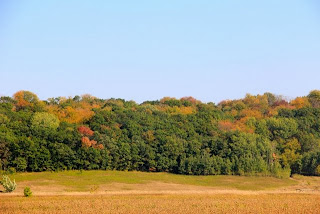 photo of fall colors starting to show