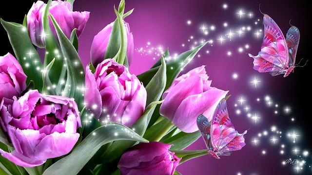 Mariposas y Tulipanes Violeta