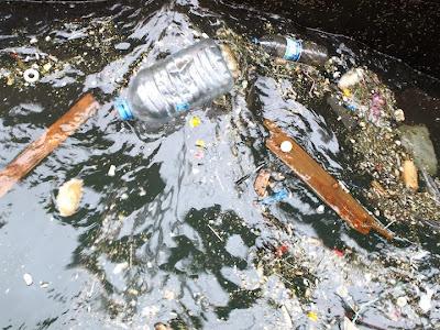 """La FAO alerta """" no podemos seguir usando nuestros océanos como vertederos """""""