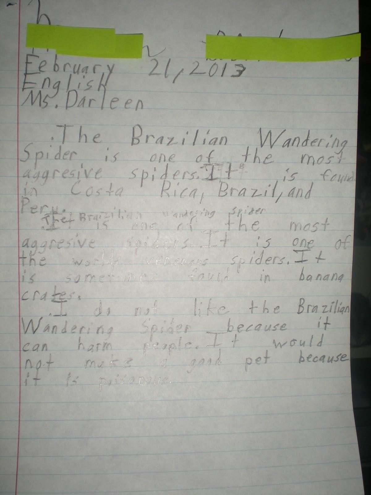 Hofstra application essay