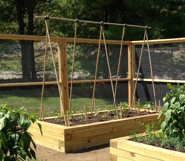 Bamboo Garden Stakes7