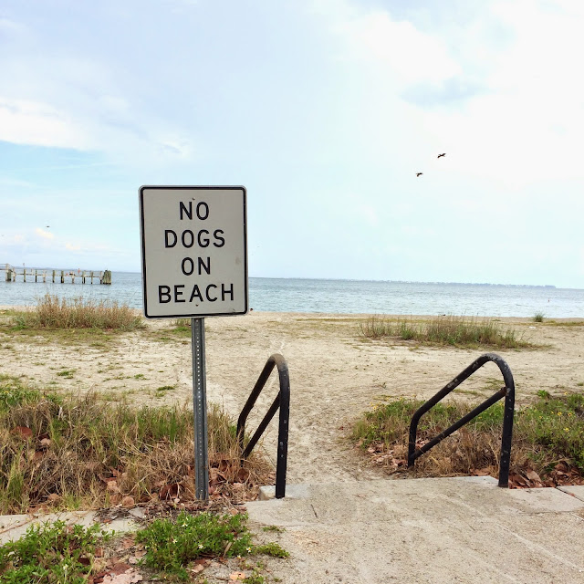 beach photography, beach day, summer 2015, beach sign