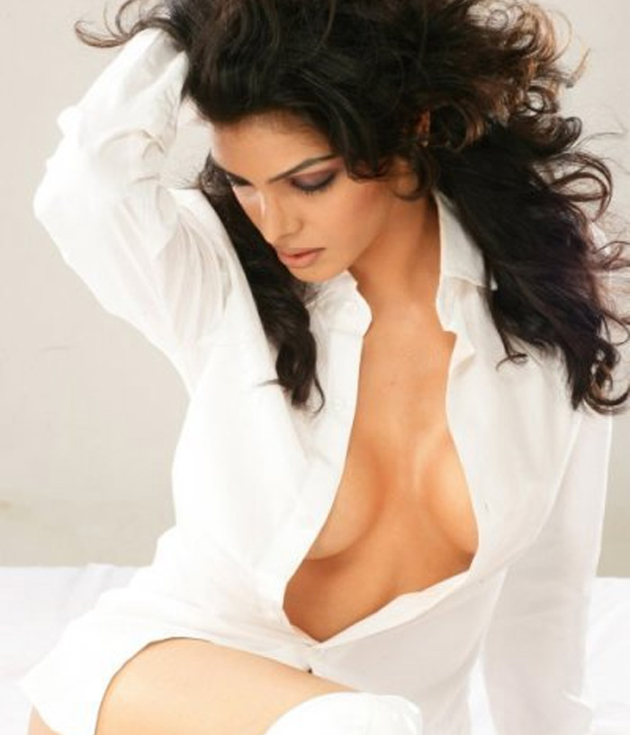 Sherlyn chopra hot dress