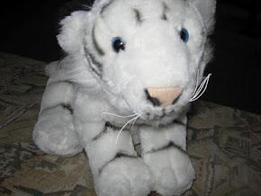 TIGRIȘOR-mascota noastră