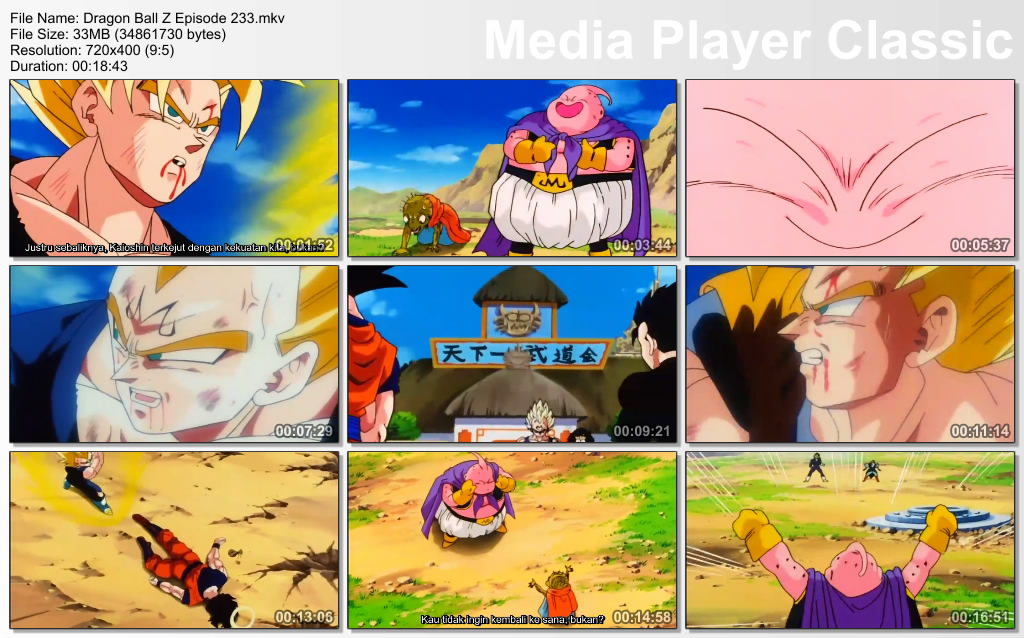 Download Film / Anime Dragon Ball Z Majin Buu Saga Episode 233 Bahasa