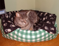 http://sussexmouse.blogspot.co.uk/2014/01/how-to-make-cat-bed-with-old-pillows.html