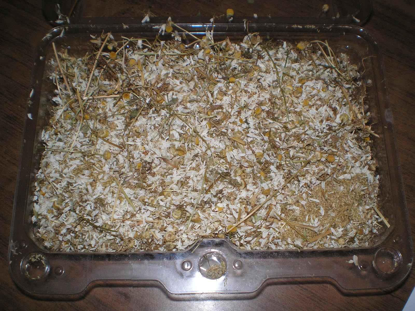 Χαμομήλι-ιππουρίδα-ρίγανη-σπαθόχορτο