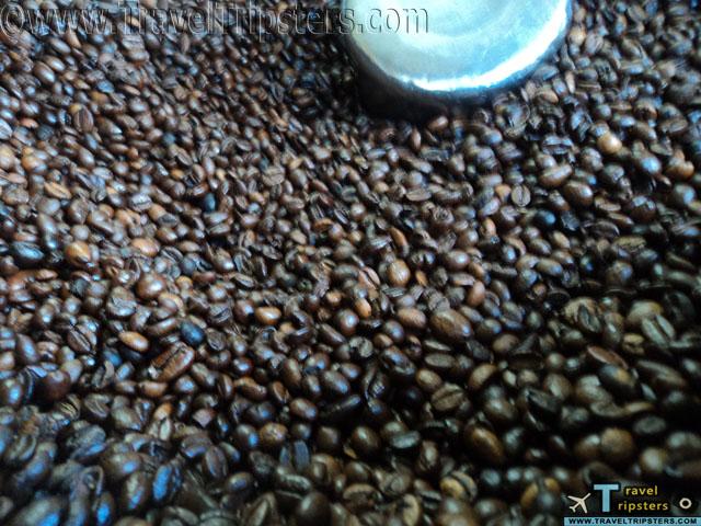 baguio coffee