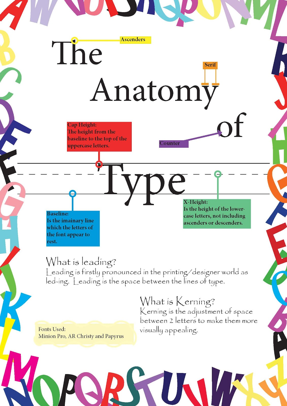 Woody\'s Creative Wonders: Anatomy of Type