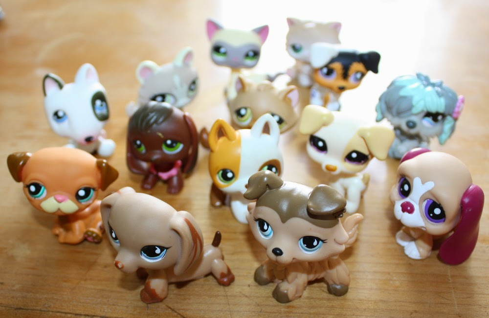 Littlest Petshop find at yard sale
