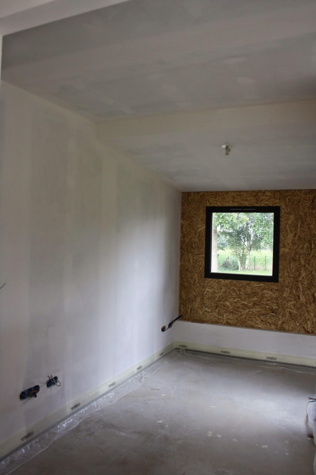 Des ch nes une maison et des livres du blanc for Repeindre un mur deja peint