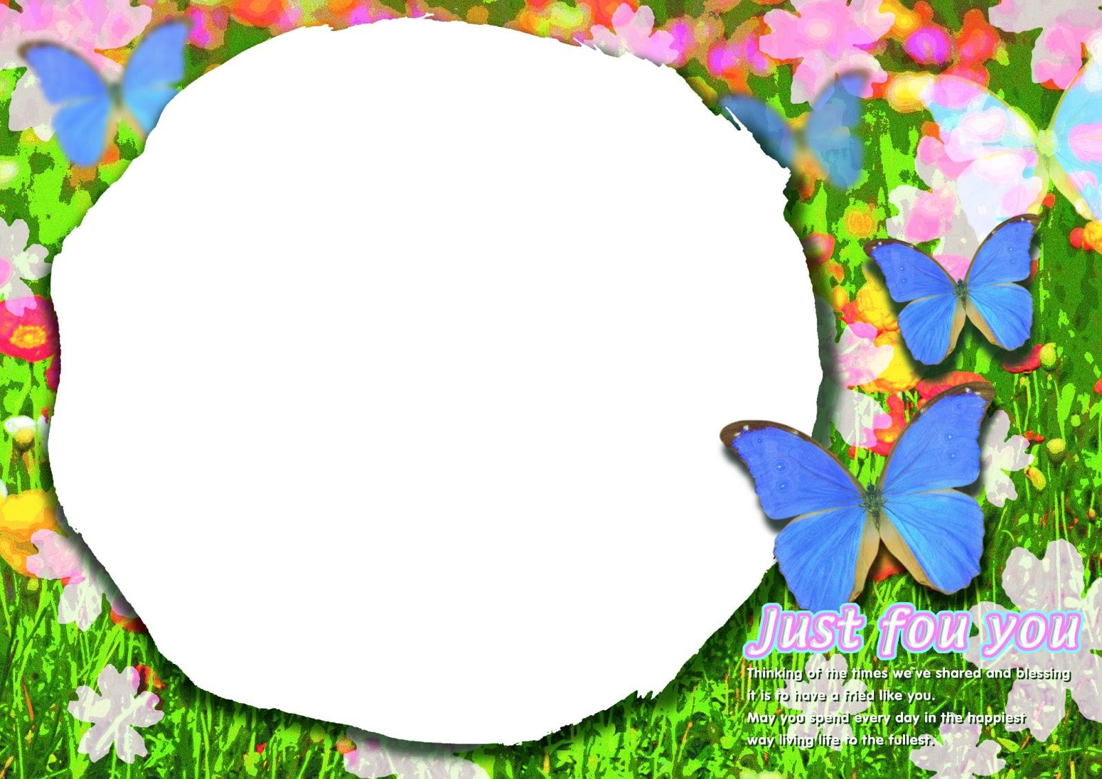 Gambar Background Kupu-kupu , Gambar Bingkai Foto Kupu-kupu