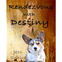 Rendezvous With Destiny by Jess Schira