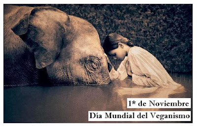 imagen dia mundial del veganismo 1 noviembre 08