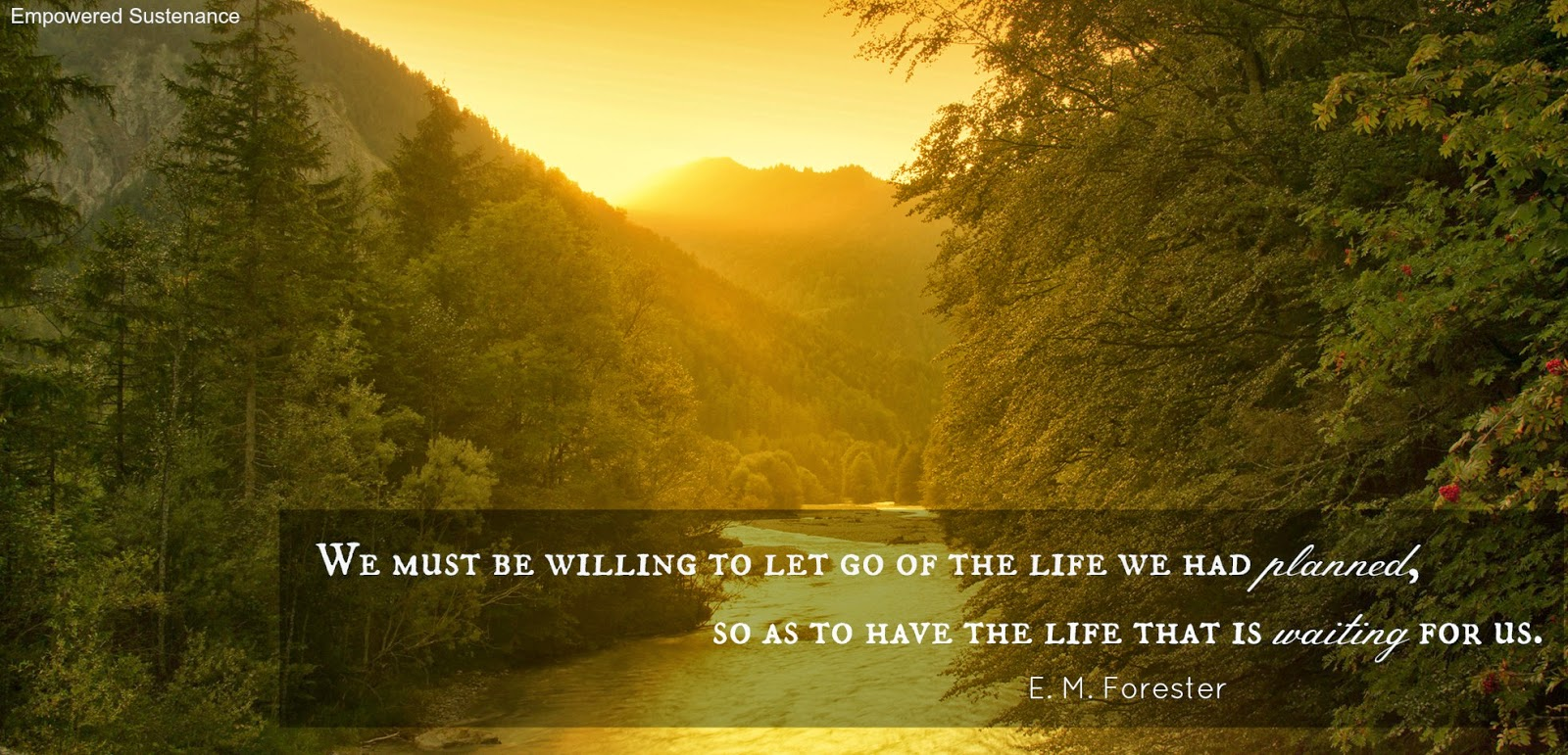 Life Journey Quotes, Journey Quotes, Life quotes