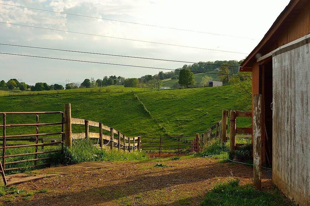 Eureka mountain life horse motel lexington virginia for Cabins in lexington va
