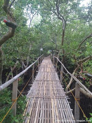 Olango Island in Cebu travel diary marine sanctuary board walk