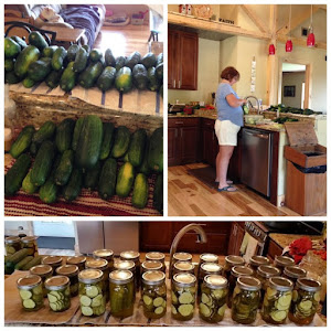 Pickling fun again!