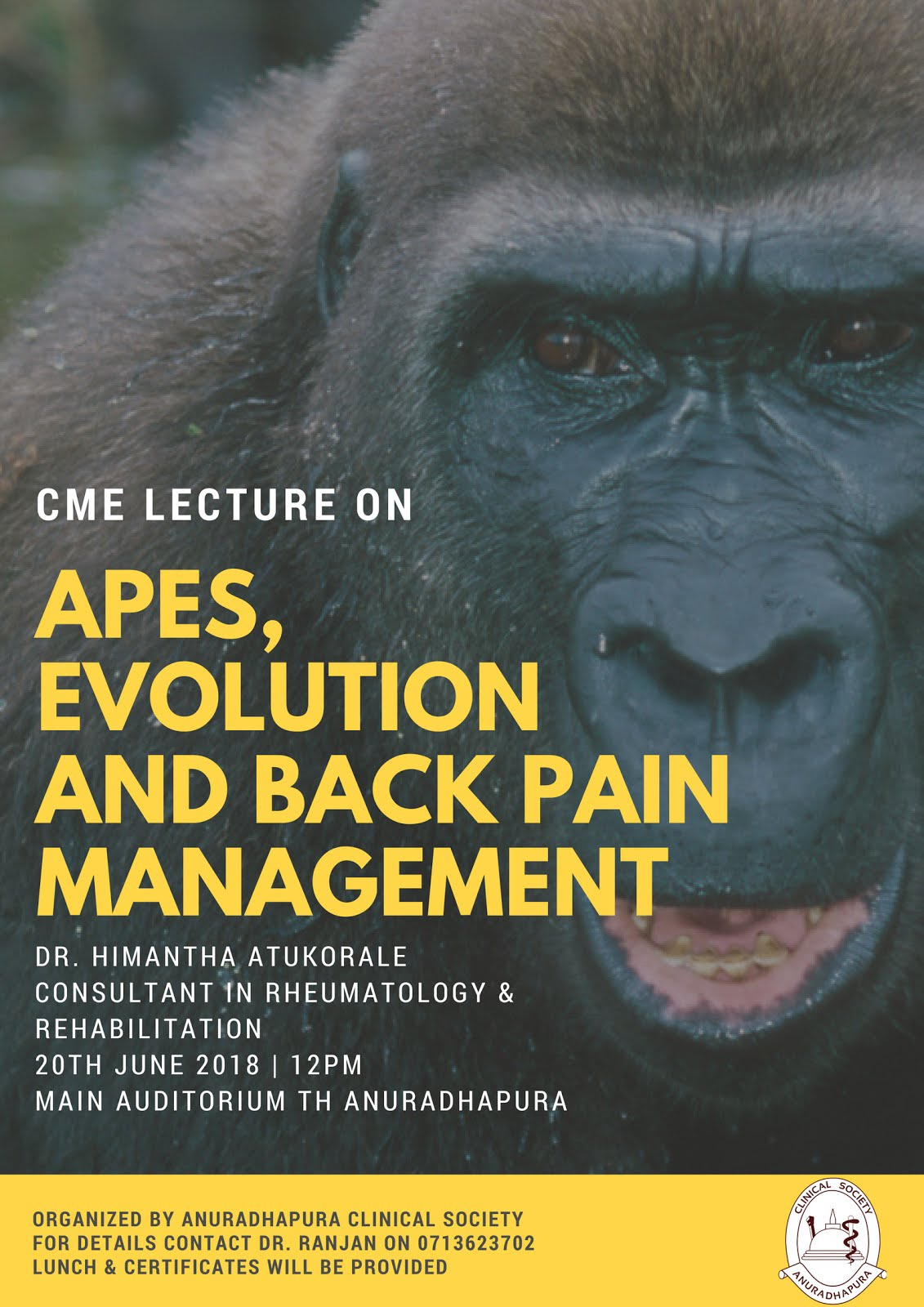 Apes, Evolution & Backpain Management