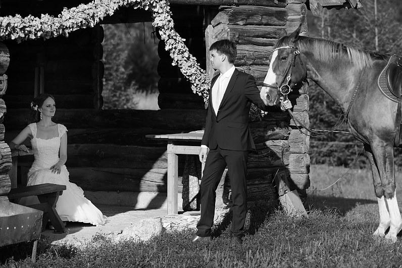 vestuvių fotosesija su arkliais