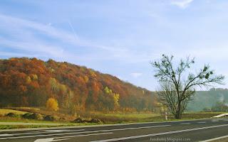 http://fotobabij.blogspot.com/2015/11/roztocze-wzgorze-porosniete-buczyna.html