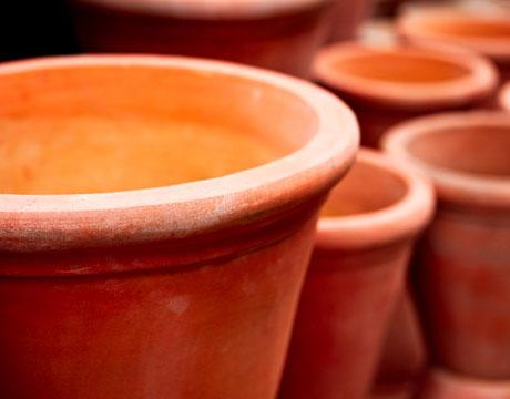النصائح للزراعة المنزلية محدود terra-cotta-pots-4-lg.jpg