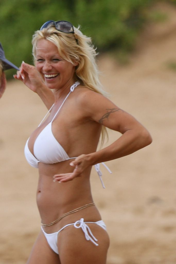 Pam anderson pictures bikini consider, that