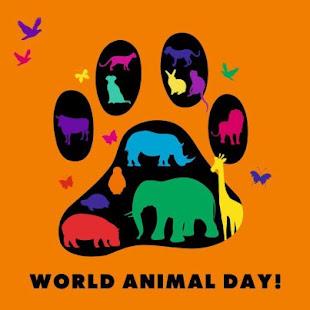 Διακήρυξη Δικαιωμάτων των Ζώων
