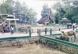 Keindahan Taman Margasatwa Sawah Lunto