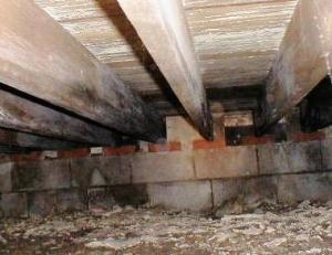 Epoxy floor coating menemukan kebocoran dinding dak dan for Building a crawl space