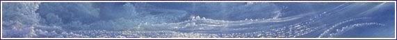 ACOPART  ( La nature par l'image , la peinture), Les Artistes